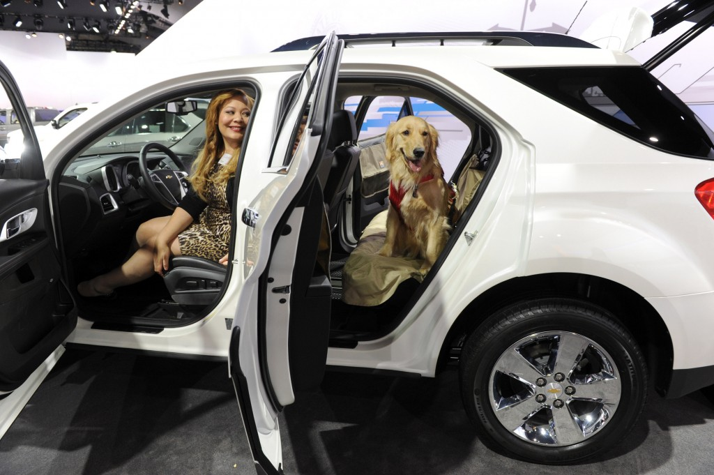 2012 Chevrolet Equinox - NYAS pet day