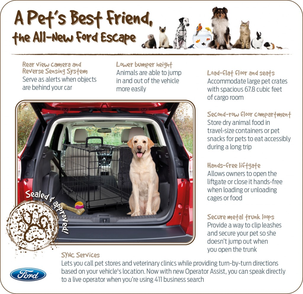2013 Ford Escape - pet friendly