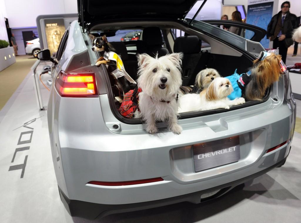 Chevrolet at NYAS pet day