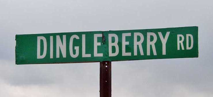 dingleberry_rd_100010056_l.jpg