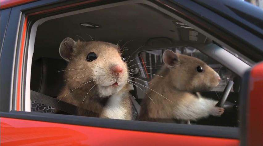 Video: Nielsen Announces Nominees for 2010 Automotive Ad Awards