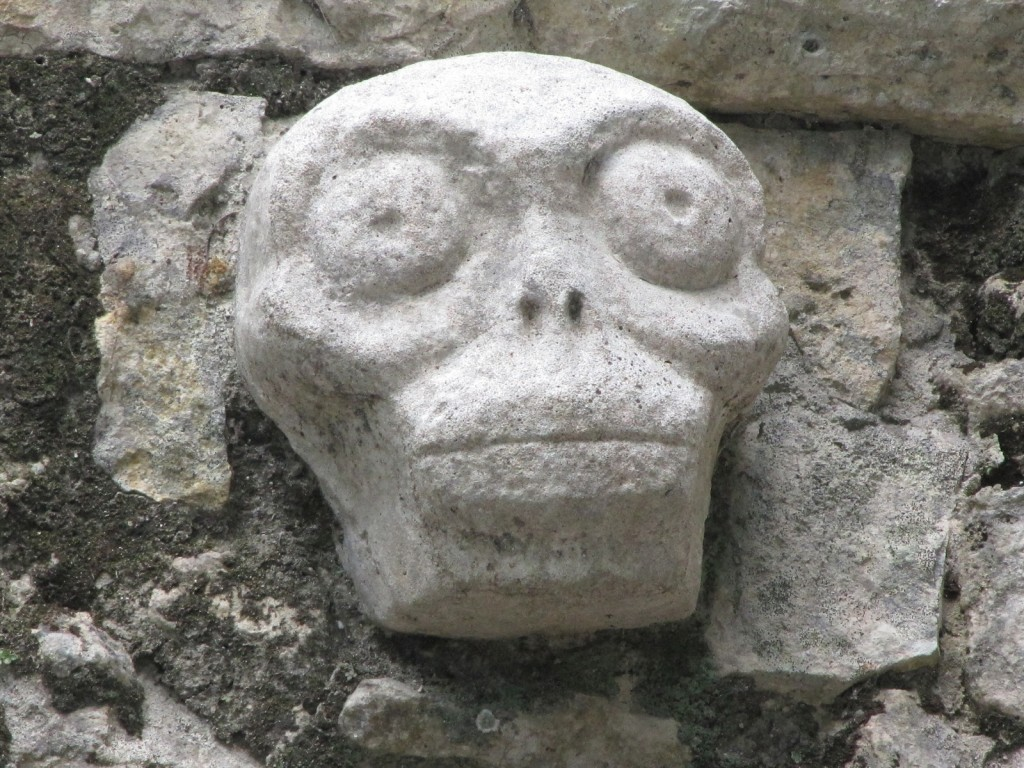 Mayan skull carving at Cobá, Yucatan Peninsula [photo: John Voelcker]