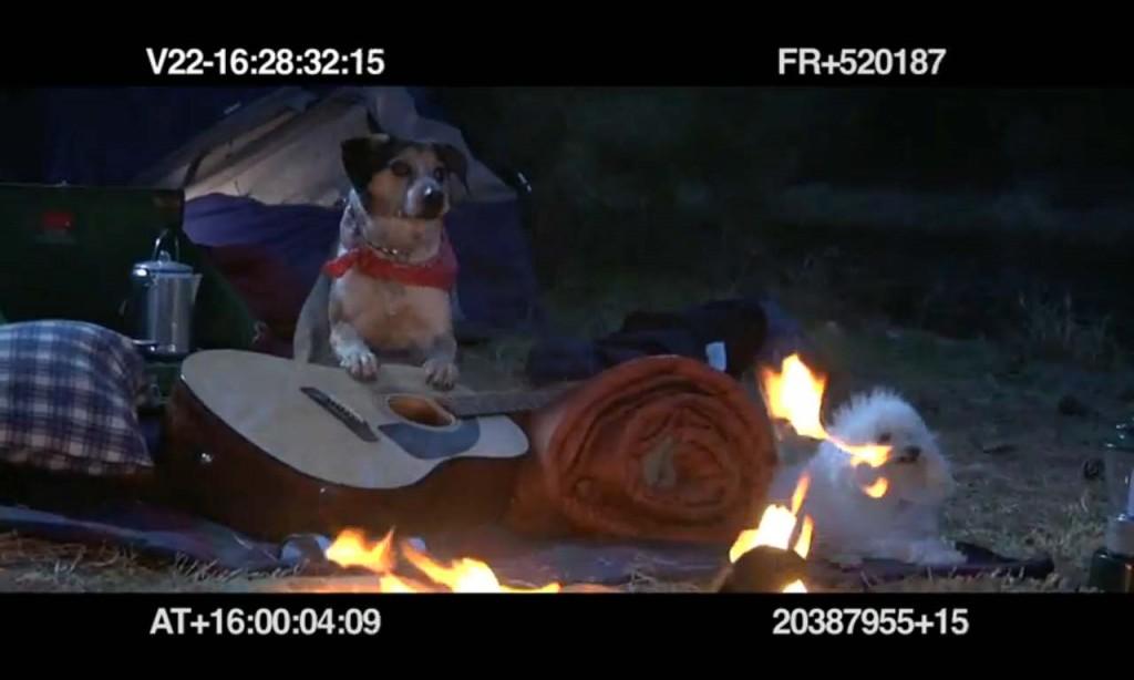 Subaru's 'Dog tested. Dog approved' blooper reel