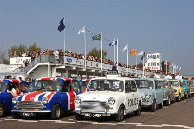 2009 Goodwood Revival Tribute to Mini (photo by Paul Melbert)