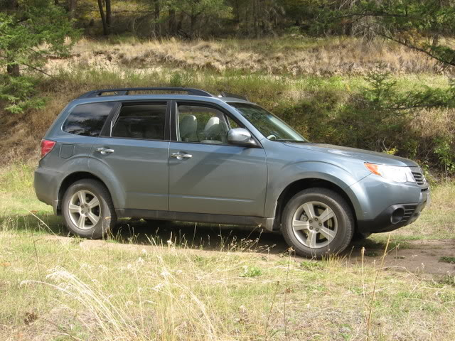 2010 Subaru Forester in Sage Green, with real sage, taken by Trainman on SubaruForester.org