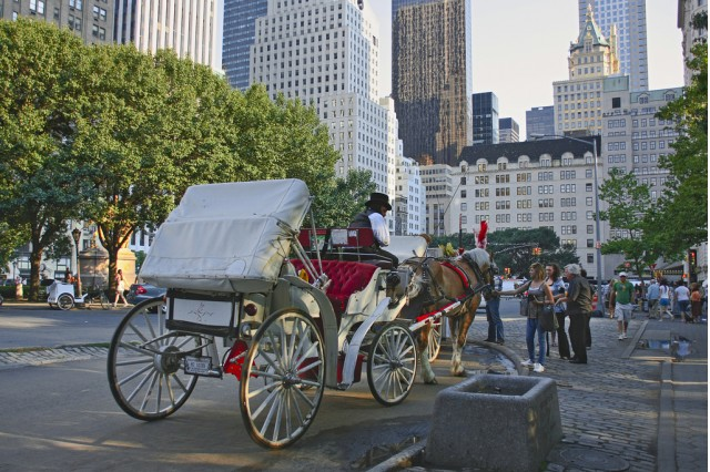 Central Park horse-drawn carriage. Photo by Flickr user Tomas Fano.