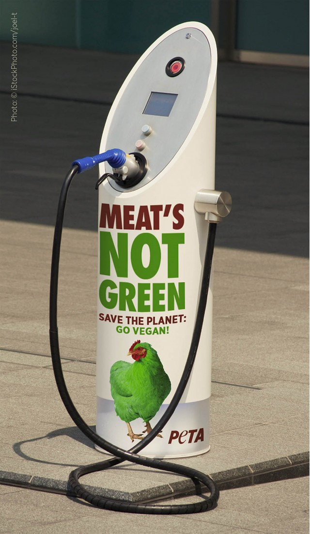 PETA vegan ad on electric-car charger