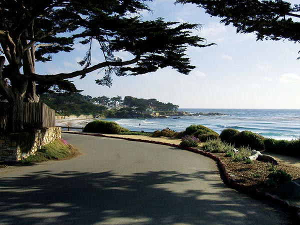 Scenic road in Carmel, California