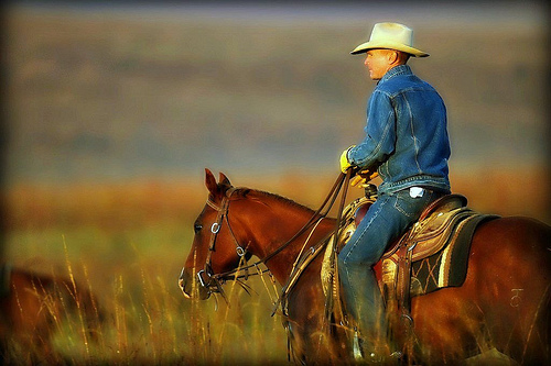 Texas cowboy by Flickr user aechempati