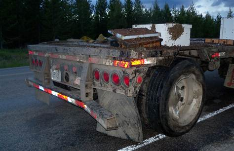 Truck spills 14 million bees in Idaho