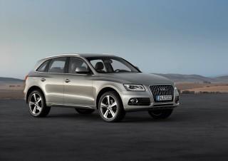2013 Audi Q5 Photo