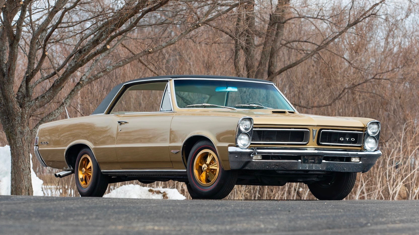 1965 Pontiac Hurst GeeTO Tiger special edition up for auction