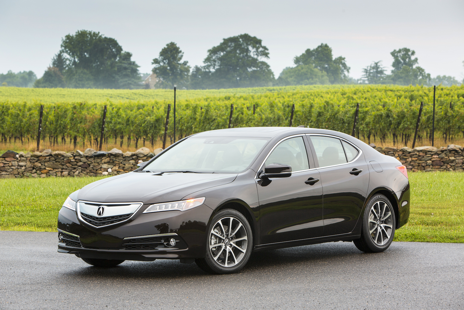 2015 acura tlx recalled to fix transmission glitch. Black Bedroom Furniture Sets. Home Design Ideas