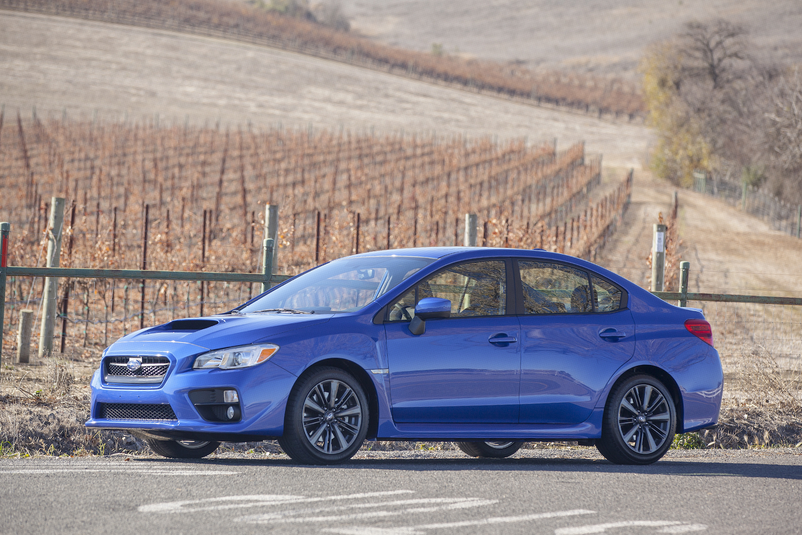 Wrx Vs Gti >> 2015 Volkswagen Gti Vs 2015 Subaru Wrx Head To Head Video