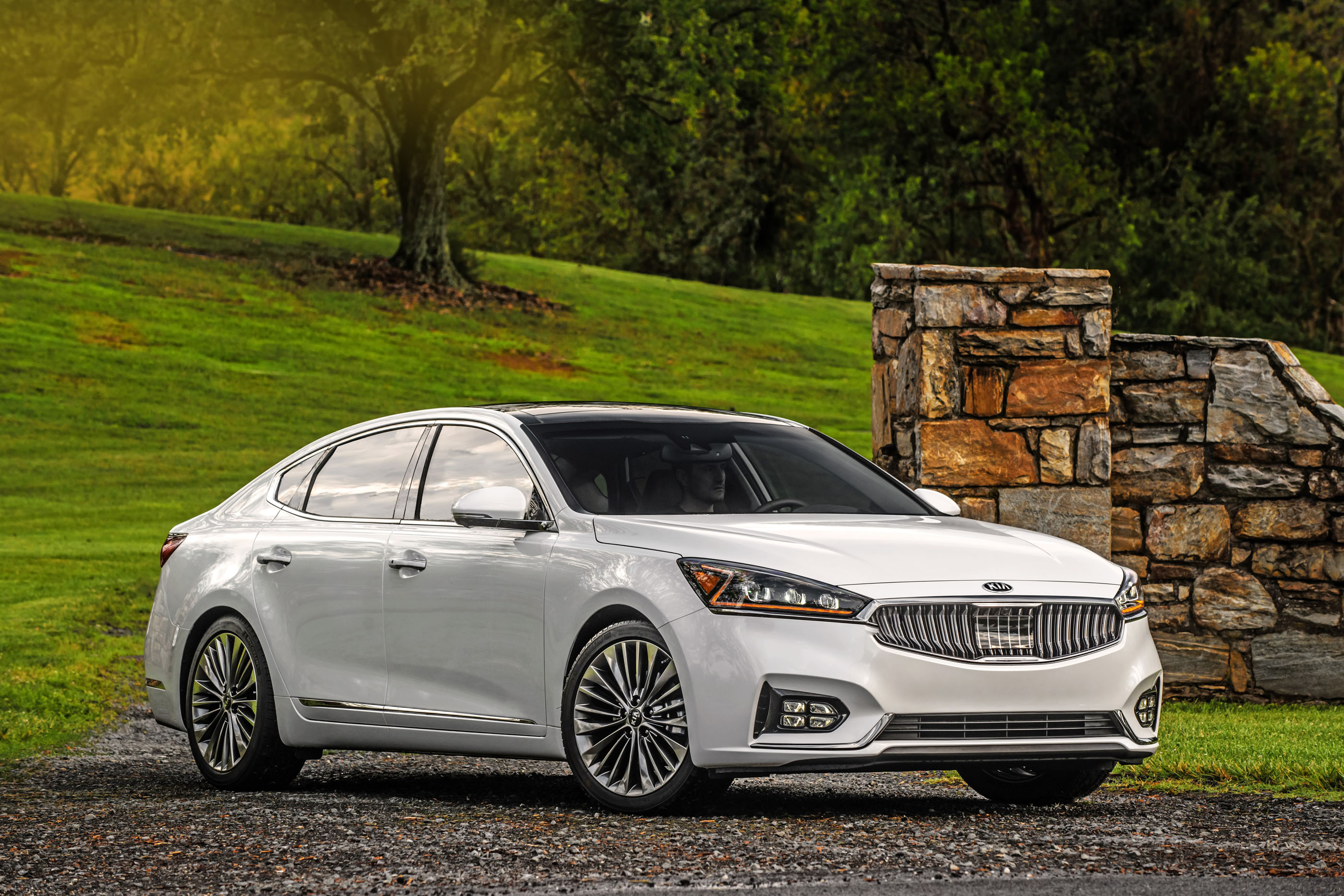 2017 kia cadenza review ratings specs prices and photos the car connection. Black Bedroom Furniture Sets. Home Design Ideas