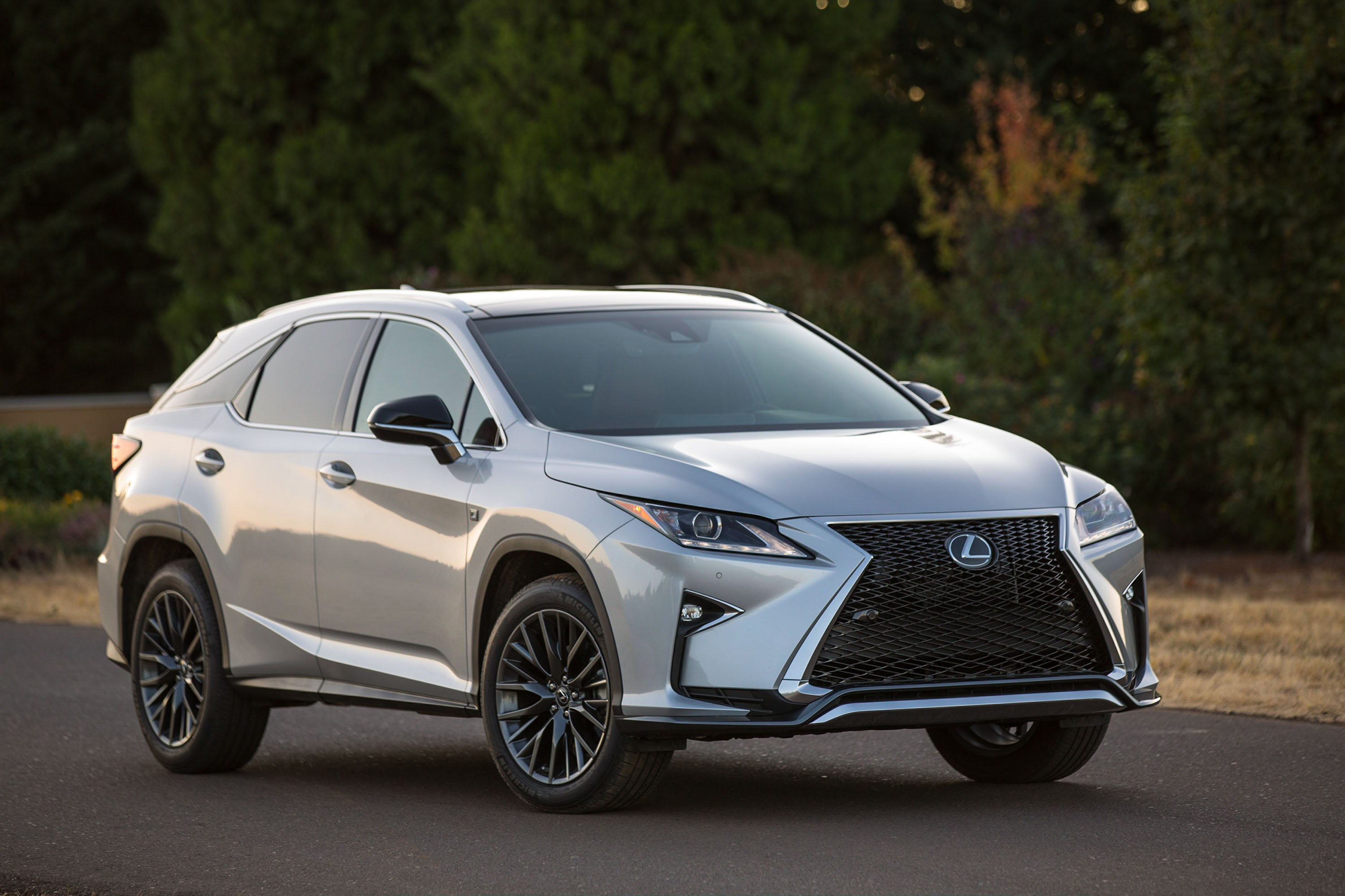 2017 lexus rx 350 review ratings specs prices and photos the car connection. Black Bedroom Furniture Sets. Home Design Ideas