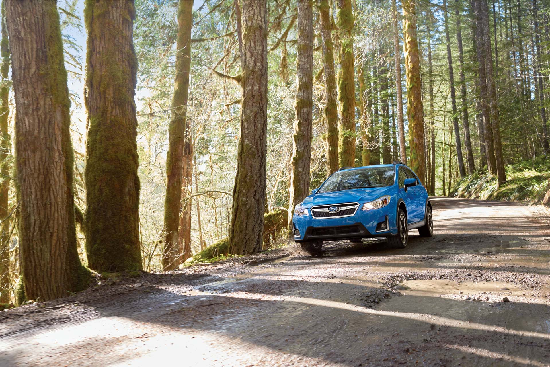 2017 Subaru Crosstrek Safety Review and Crash Test Ratings  The