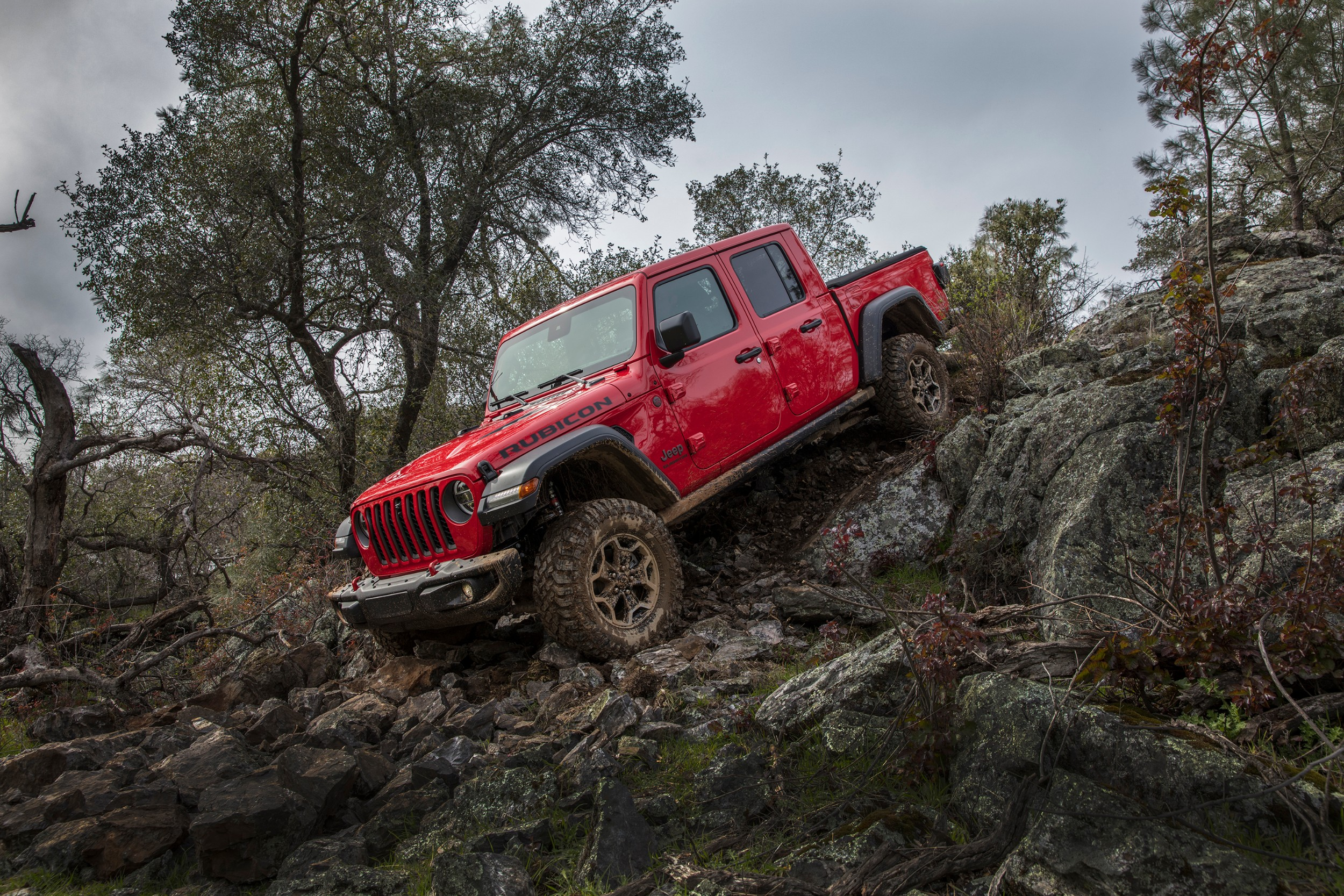 2020 Jeep Gladiator, 2020 Chevrolet Corvette, 2021 Land ...