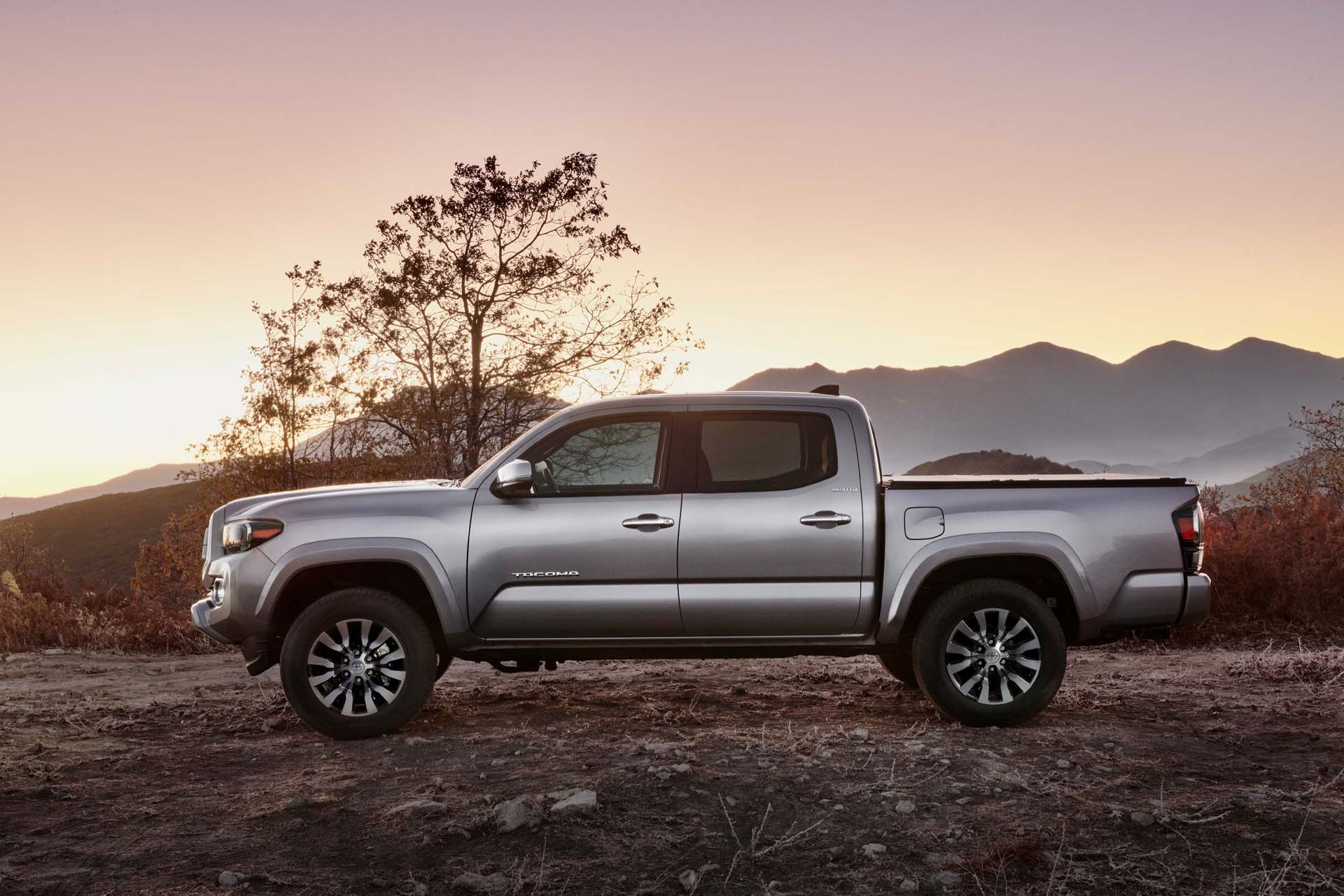Tacoma Back Pages >> 2020 Toyota Tacoma Review Ratings Specs Prices And