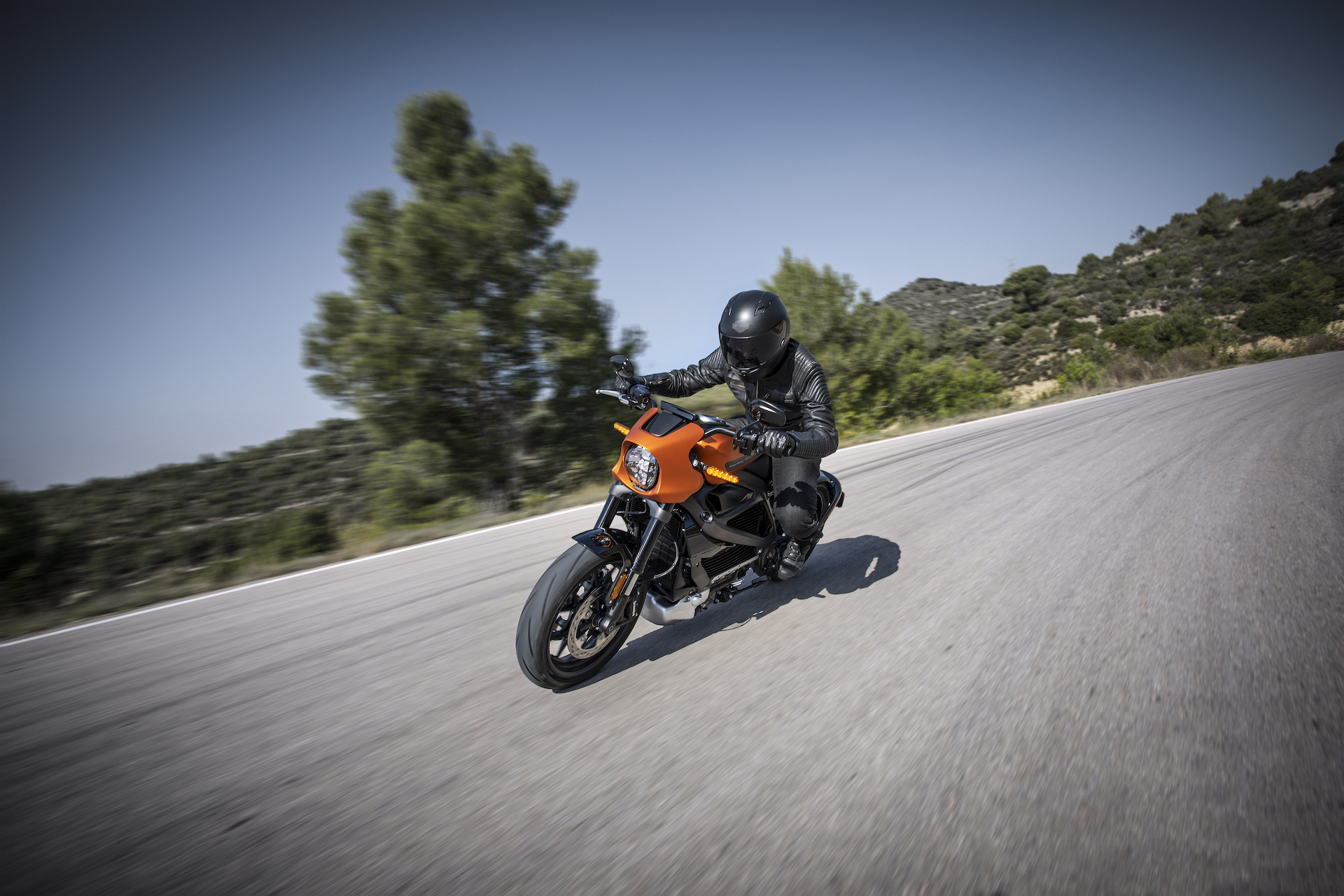No more rumble: Harley-Davidson LiveWire electric motorcycle arrives