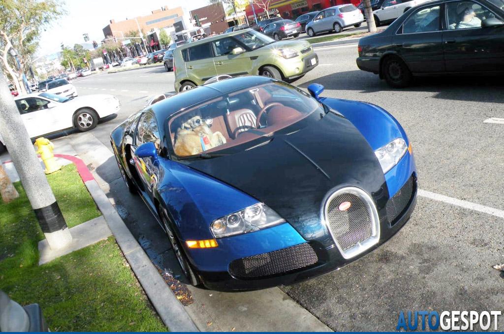 What Car Company Makes Bugatti Veyron