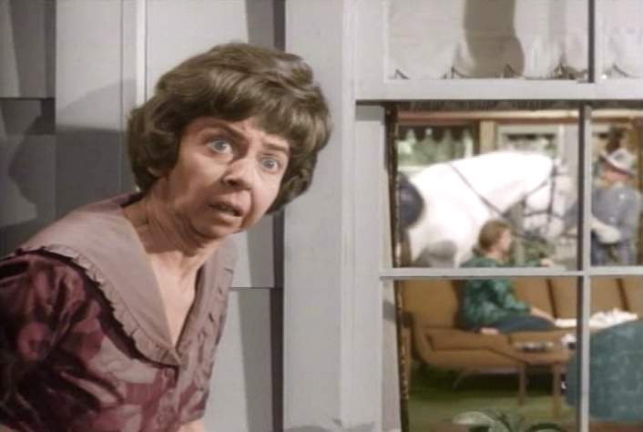 Gladys Kravitz, nosey neighbor