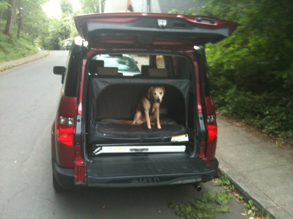 Honda element dog friendly package for sale