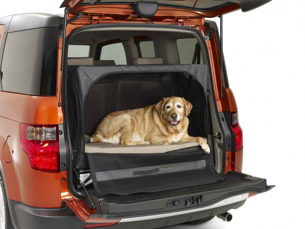 2010 Honda Dog Friendly Element