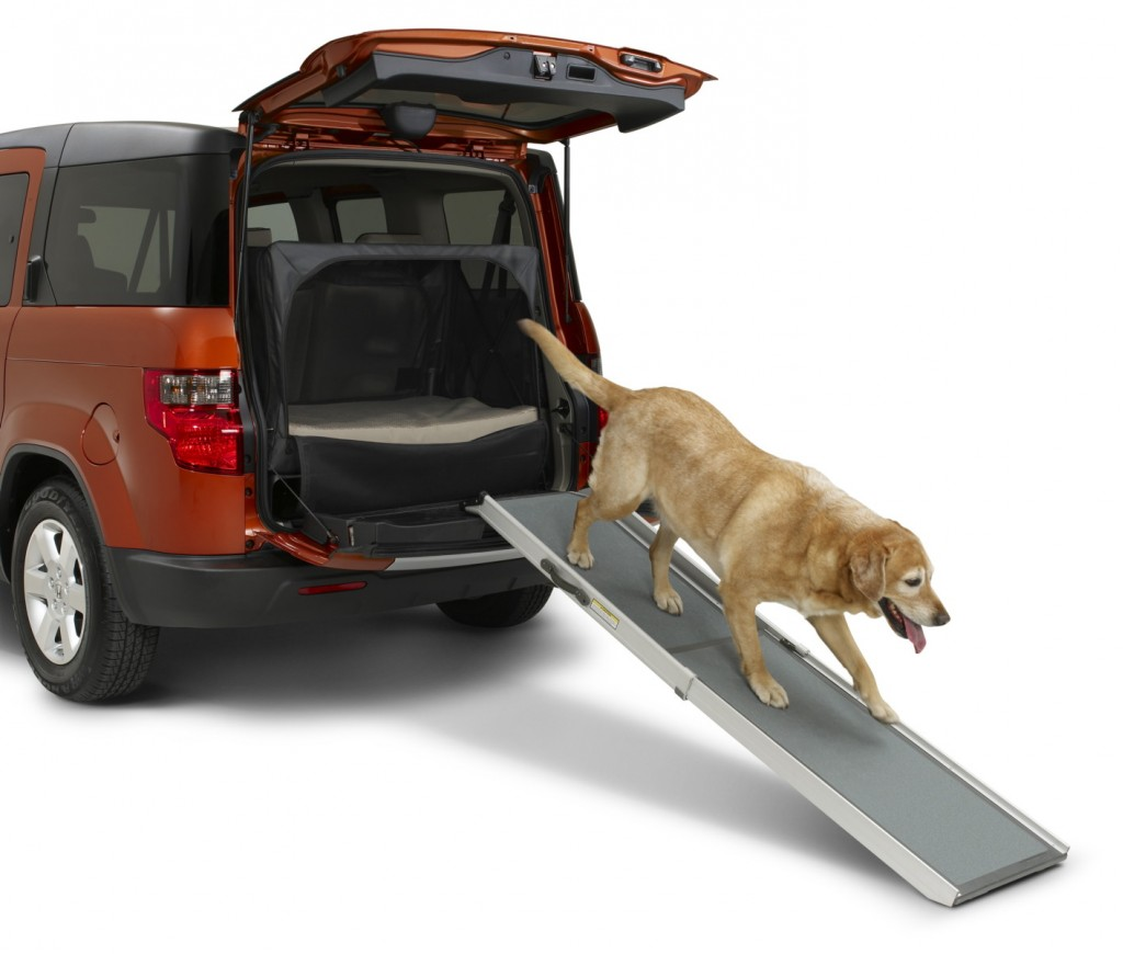 2010 Honda Dog Friendly Element