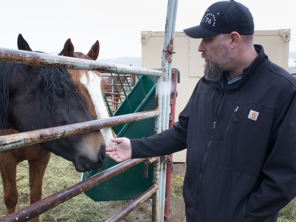 Jeremy Wilhelm at Palomino Valley's National Wild Horse and Burro Center