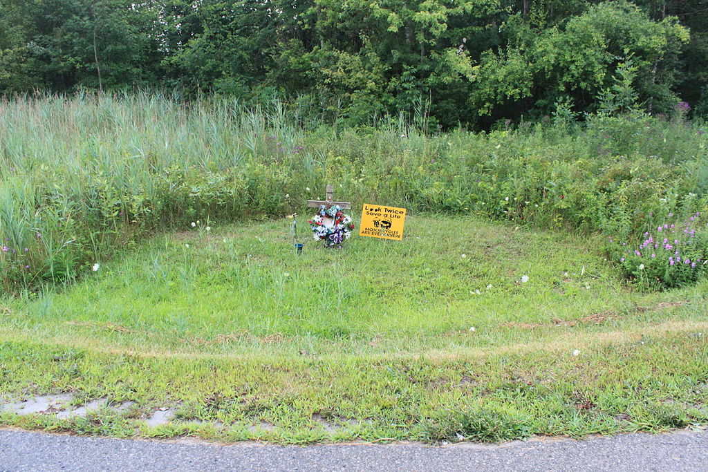 Memorial to motorcycle accident victim, Augusta Township, Michigan (photo by Dwight Burdette)
