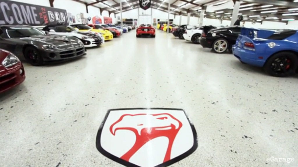 Meet The Couple With 65 Vipers: Video