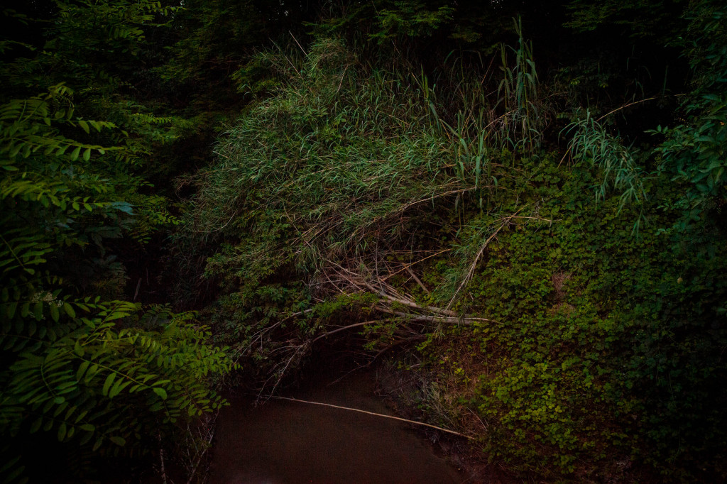 The Rubicone river (Crossing the Rubicone)