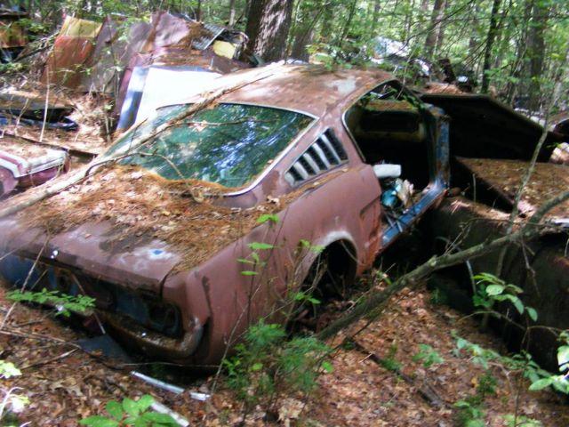 Massive Mustang Junkyard Found In Rhode Island