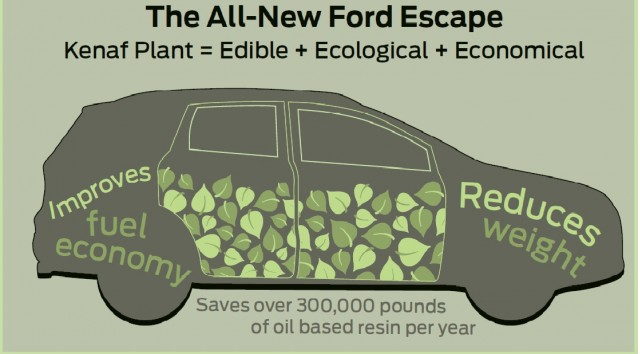 Renewable kenaf plant used in door bolsters of 2013 Ford Escape
