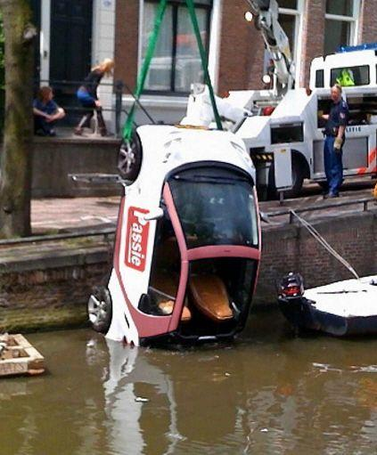 Amsterdam Idiots Evolve From Cow Tipping To Smart Dunking