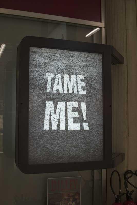 Tame Me Geneva 2005