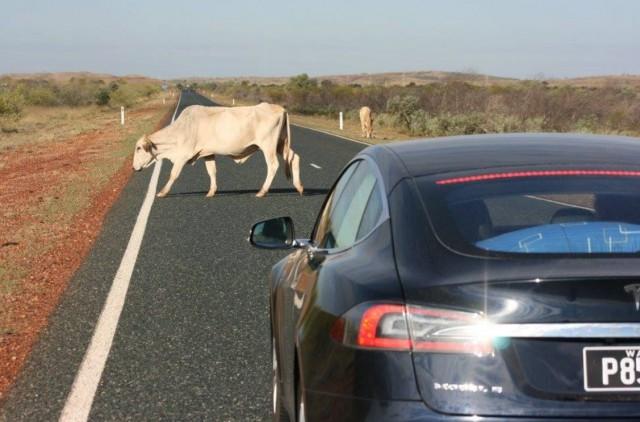 Tesla Model S on Australia's Northwest Coastal Highway [photo: Robert & Robin]