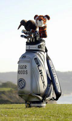 Tiger Woods Buick golf bag